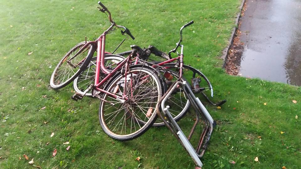 Úlovky bicyklov z vody