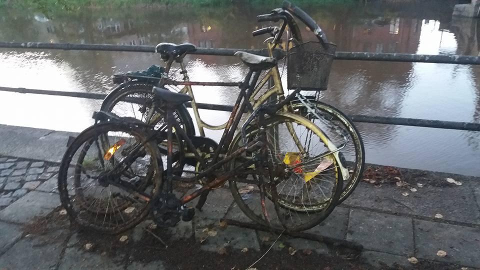 Parádny cyklistické úlovky
