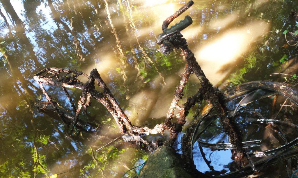 Riasami zarastený bicykel vo vode
